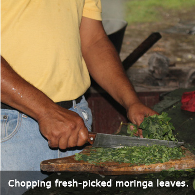 2 Nica-chopping moringa