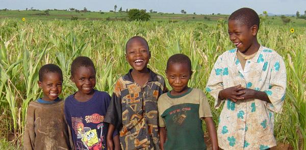 Boys-in-cornfield